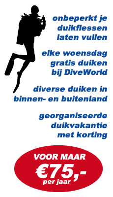 advertentie 1
